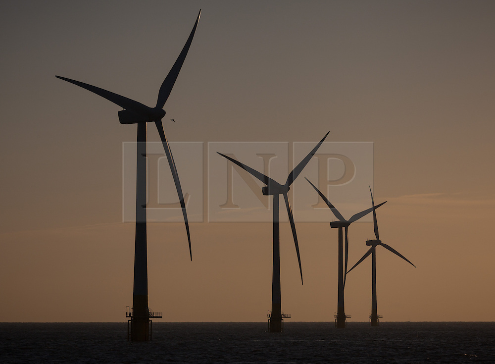 © Licensed to London News Pictures. 10/10/2014. Great Yarmouth, Norfolk, UK. The sun rising over the Scroby Sands Offshore Wind Farm off the coast of Great Yarmouth in Norfolk this morning, 10th October 2014. Photo credit : Rob Arnold/LNP