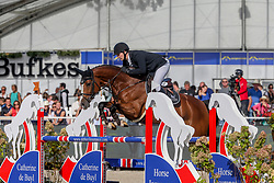 Knape Niels, BEL, indy MBF<br /> Final 6 years  old Horses<br /> Zangersheide FEI World Breeding Jumping Championship 2018<br /> © Hippo Foto - Julien Counet