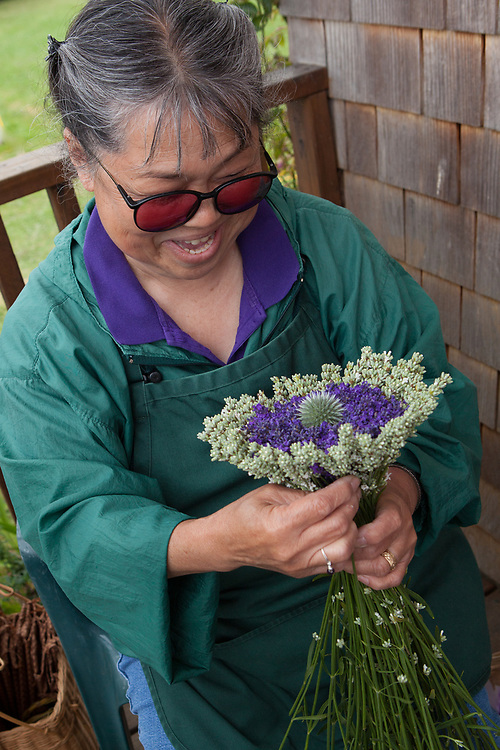 North America, United States, Washington, Sequim, woman making bouquet of dried lavender at Lavender Festival, held annually each July