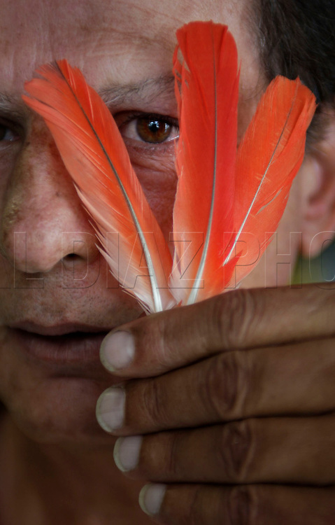3-07-08 AL DIAZ / MIAMI HERALD -- Ernesto Pichardo, a santeria religious oba priest, with a African Grey Parrott feather. These are some of the many items sent to Cuba by santeria followerers AL DIAZ / MIAMI HERALD