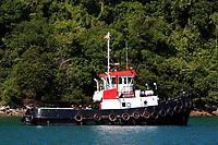 big boat in ilha grande of state of rio de janeiro in angra dos reis in brazil