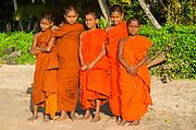 Group of young monks pose on Matara beach, Sri Lanka
