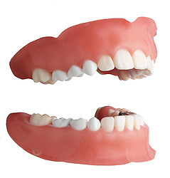 teeth 006 Teeth Dentures