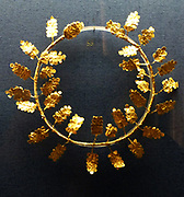 Gold wreath of oak leaves and flowers.  Late 4th early 3rd century BC
