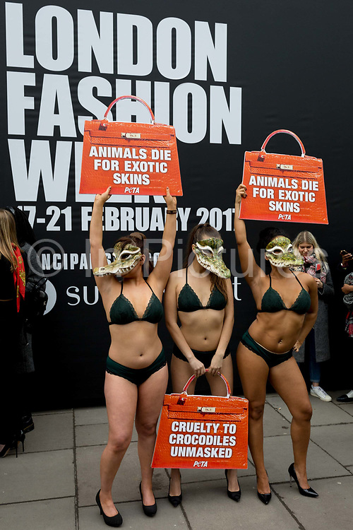 Lingerie-clad models stage a protest by the animal rights organisation, Peta against the suffering of animals, on 17th Febriary 2017, in London, England, United Kingdom. The group stripped off into matching green underwear and crocodile masks before posing outside the shows main venue on the Strand in central London. Peta is campaigning against the use of exotic animal skins in the fashion industry. It follows an investigation of crocodile farms which found animals were confined to pits and sometimes still alive when their skin was torn off, Peta said. London Fashion Week is a clothing trade show held in London twice each year, in February and September. It is one of the Big Four fashion weeks, along with the New York, Milan and Paris. The fashion sector plays a significant role in the UK economy with London Fashion Week alone estimated to rake in £269 million each season. The six-day industry event allows designers to show their collections to buyers, journalists and celebrities and also maintains the city's status as a top fashion capital.