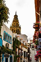 Narrow streets of the Old City, Cordoba, Cordoba Province, Andalusia, Spain.
