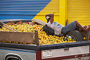Belize, San Ignacio - Laborer hangs out on a truck full of oranges as it weaves through the center of town from the orchard.