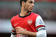 Arsenal's Captian Mikel Arteta looks on during Barclays Premier League , Arsenal v Sunderland at the Emirates Stadium in London, England on Saturday 22nd Feb 2014.<br /> pic by John Fletcher, Andrew Orchard sports photography.