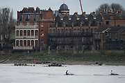 """London. United Kingdom,  Both crews pass the """"White Hart"""" during the 2017. Oxford University, Annual Trial Eights, raced over the Championship Course, Putney to Mortlake. River Thames, <br /> <br /> Wednesday  06/12/2017<br /> <br /> [Mandatory Credit:Peter SPURRIER Intersport Images]<br /> <br /> OUBC Crew Names. <br /> STABLE White Shirts.<br /> Bow. Jonathan Olandi<br /> 2. Charles Buchanan<br /> 3. Will Cahill<br /> 4. Alexander Wythe<br /> 5. William Geffen<br /> 6. Anders Weiss<br /> 7. Iain Mandale<br /> Stroke. Vassilis Ragoussis<br /> Cox. Zachary Thomas Johnson<br /> <br /> STRONG Black Shirts<br /> Bow. Luke Robinson<br /> 2. Angus Forbes<br /> 3. Nicholas Elkington<br /> 4. Benedict Aldous<br /> 5. Tobias Schroder<br /> 6. Joshua Bugajski<br /> 7. Claas Mertens<br /> Stroke. Felix Drinkall<br /> Cox. Anna Carbery"""