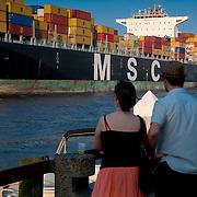 People watch MSC Tamara coming into Savannah port