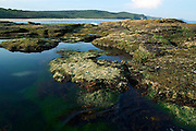 Rockpools at Dudley Beach