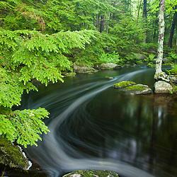 Moores Brook in Ellsworth, Maine.  Moores Brook empties into Branch Lake.