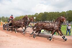 Glenn Geerts, (BEL), Antonio, Ozora Rangos, Red, Scampolo 49, Watapatja - Driving Marathon - Alltech FEI World Equestrian Games™ 2014 - Normandy, France.<br /> © Hippo Foto Team - Jon Stroud<br /> 01/01/2014