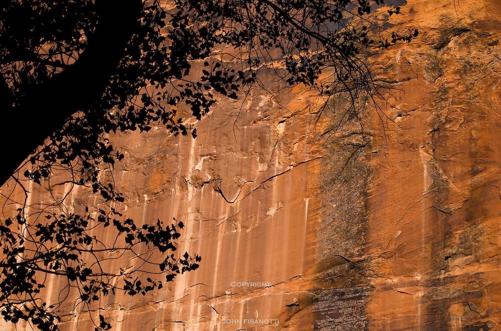 """The dark streaks on the sandstone are called """"Desert Varnish"""""""