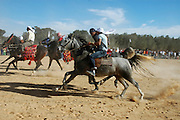 Israel, Negev, Beduin horse racing in the desert