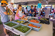 "09 JUNE 2012 - PHOENIX, AZ: People shop for fresh produce at a stand in the Roadrunner Farmers' Market in Phoenix.  The Roadrunner Farmer's Market, in Roadrunner Park in Phoenix, is one of the most popular farmers' markets in the Phoenix area. Unlike many of the other farmers' markets, it's open year round. Most of the vendors in the market are local small scale farmers who practice sustainable agriculture. The market is very popular with ""locavores,"" people interested in eating food that is locally produced and not moved long distances to market.    PHOTO BY JACK KURTZ"
