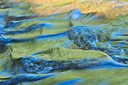 La Petite rivière Iroquois<br />Saint-Jacques<br />New Brunswick<br />Canada