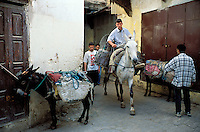 Maroc - Fès - Les souks de Fès el Bali - Cheval - Ane - Medina