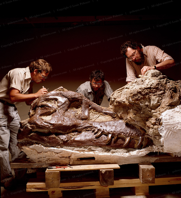 """The T.rex called Sue was excavated and prepared by the Black Hills Institute.  Founders Pete (left) brother Neal Larson (Center) and Bob Farrar (right).<br /> Pete Larson consols and gets consoled by family and Black Hills Institute members as """"Sue"""" was seized by Federal troops."""