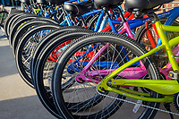 Line of bikes for sale outside of a bike shop.