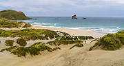 A woman walks down to Sandfly Beach.  High-angle view of Sandfly Beach and Bay, on the Otago Peninsula, near Dunedin, Otago, New Zealand