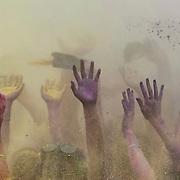 Hands, Run or Dye, June 2013.