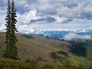 High angle view of the Clearwater National Forest in northern Idaho, United States, just north of the Lochsa River.