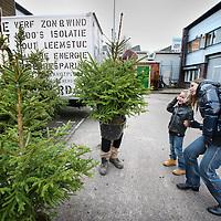 Nederland, Amsterdam , 7 december 2011..Een kerstboom adopteren bij Eco-Logisch op de winkel Van Slingelandtplein 9..Kerstboom met kluit die na de kerstdagen weer ingeleverd kan worden. Het jaar daarop is de boom weer beschikbaar.