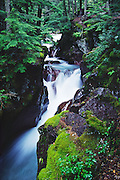 Water tumbles through Avalanche Gorge, in Glacier National Park, Montana, USA