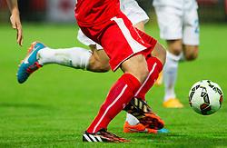 Ball during football match between National teams of Slovenia and Switzerland at Round 2 of Euro 2016 Qualifications, on October 9, 2014 in Stadium Ljudski vrt, Maribor, Slovenia. Photo by Vid Ponikvar / Sportida.com