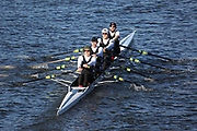 Crew: 4   Leicester Rowing Club   LER-HARDING   4x- Band 1<br /> <br /> Head of the Trent 2018<br /> Division 3<br /> <br /> To purchase this photo, or to see pricing information for Prints and Downloads, click the blue 'Add to Cart' button at the top-right of the page.