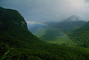 Rainbow over remote temperate forest at the southern tip of New Zealand, South Island