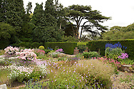 A view of Rosa 'Ballerina', borders and box hedge around Sylvia's Garden at Newby Hall, Ripon, North Yorkshire, UK
