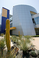 Cactuses grow in the center of the Googleplex campus in Mountain View, Calif. on May 15, 2007. (Photo by Jakub Mosur/For Boston Globe)