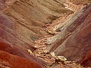 Southern Utah, Escalante National Monument