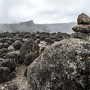 A small rock cairn set up to mark the trail between Moir Hut Camp and Lava Tower on Mt Kilimanjaro's Lemosho Route.