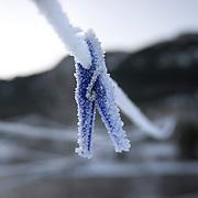 Noorwegen Gol 27 december 2008 20081227 Foto: David Rozing .Wintertafereel, stilleven van aangevroren knijpers aan waslijn door strenge vrieskou.Wintertime, stills of frozen clips on clotheslines.Foto: David Rozing