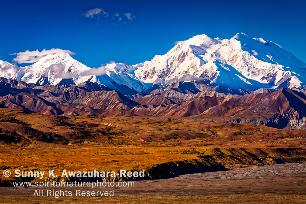 Close up of Mount Denali (McKinley) and Muldrow Glacier, viewed from Eielson Visitor Center, Denali National Park & Preserve, Alaska, Autumn.