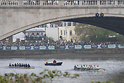 London,  England, Great Britain, 7th April 2019, The Victorious CUWBC crew celebrate winning the 2019 Women's Varsity, Boat Race,  Oxford and Cambridge Universities,  Championship Course, Putney to Mortlake, River Thames,<br /> [Mandatory Credit: Karon PHILLIPS], Sunday  07/04/2019