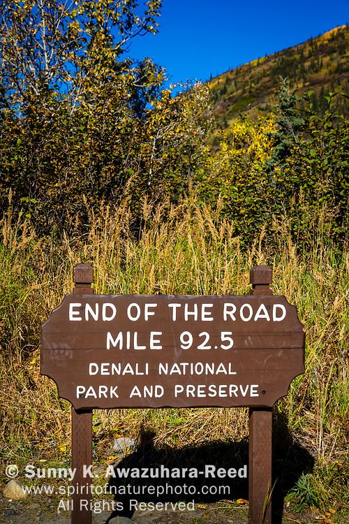 End of the Road Mile 92.5 Sign, Denali National Park & Preserve, Interior Alaska, Autumn. Vertical image.