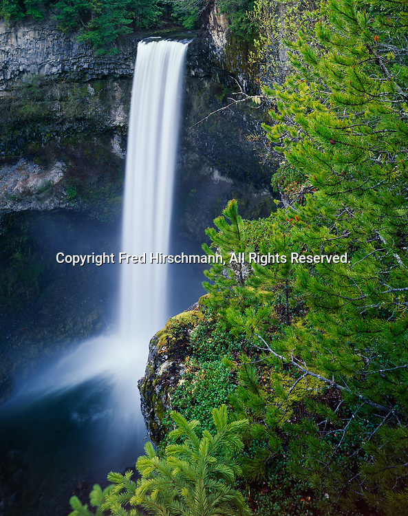 Brandywine Falls spilling 70 meters or 216 feet over cliff of columnular basalt, Brandywine Falls Provincial Park, British Columbia, Canada.