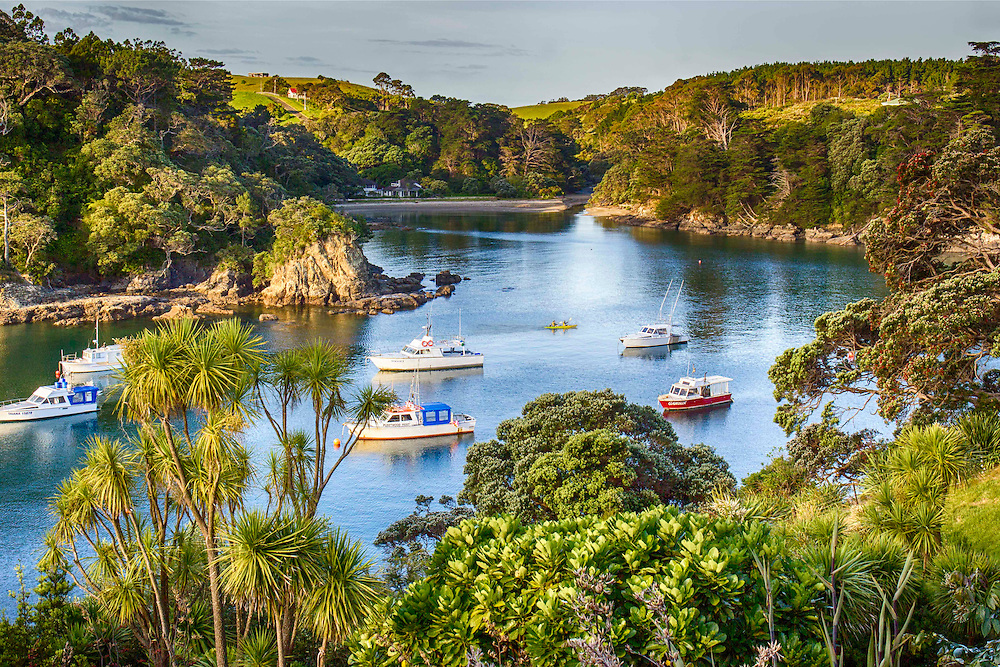 Leigh Bay - Rodney District, Auckland<br />
