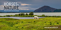 A visual keepsake for admirers of Icelandic<br /> nature and horses<br /> The nature of Iceland is<br /> unique and so is the Icelandic horse. In these<br /> photo-graphs both are in focus, the beautiful<br /> and often dramatic landscape and the horse,<br /> small but strong. Kristján Ingi Einarsson is the<br /> author of many of Iceland 's best selling books<br /> of landscape photography. He is at his best in<br /> this attractive book that is an ode to the<br /> Icelandic horse and the nature it lives in.