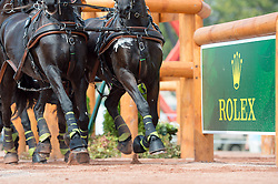 Edouard Simonet, (BEL), Dark Dream, Maximus, Topspeed Bauke, Topspeed Sanne, YK Topspeed Long Beach - Driving Marathon - Alltech FEI World Equestrian Games™ 2014 - Normandy, France.<br /> © Hippo Foto Team - Jon Stroud<br /> 06/09/2014
