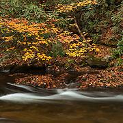Bald River Small Cascade - Fall Color - Great Smoky Mountains TN