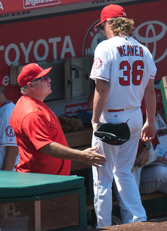 The Angels' Jered Weaver talks with Manager Mike Scioscia after pitching the seventh inning during the Angels' 8-1 victory over the Chicago White Sox at Angel Stadium on Sunday.<br /> <br /> ///ADDITIONAL INFO:   <br /> <br /> angels.0718.kjs  ---  Photo by KEVIN SULLIVAN / Orange County Register  -- 7/17/16<br /> <br /> The Los Angeles Angels take on the Chicago White Sox at Angel Stadium.
