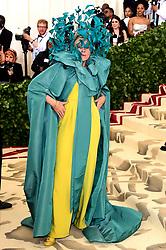 Frances McDormand attending the Metropolitan Museum of Art Costume Institute Benefit Gala 2018 in New York, USA.