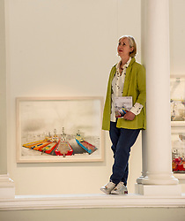Pictured: Sue Jane Taylor with View from Market Street in the background<br /> Today, the National Museum of Scotland showcased the work of visual artist Sue Jane Taylor, whose Age of Oil exhibit presents engineering in an intricate yet accessible way.  <br />  <br /> Ger Harley | EEm 20 July  2017