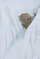 Erosion patterns, Wahweap Hoodoos, Grand Staircase Escalante National Monument Utah