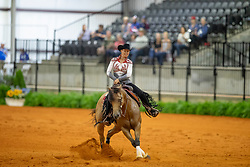 Poels Ann, BEL, Made In Walla<br /> World Equestrian Games - Tryon 2018<br /> © Hippo Foto - Dirk Caremans<br /> 12/09/2018